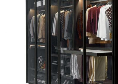 Glass doors Wardrobe with internal accessories