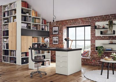 Storage and desk - Home Working system